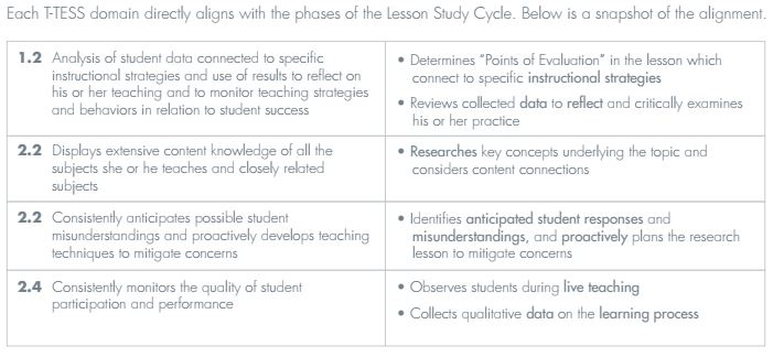 Snapshot of T-TESS alignment to Lesson Study