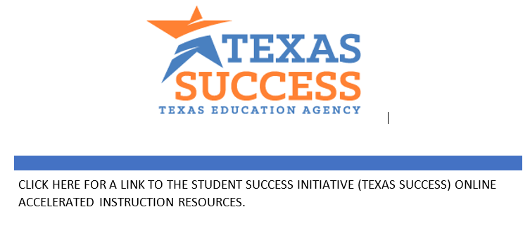 Texas Success Logo